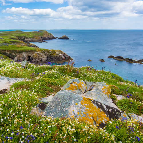 MyCheapRemovals - Move from UK to Ireland